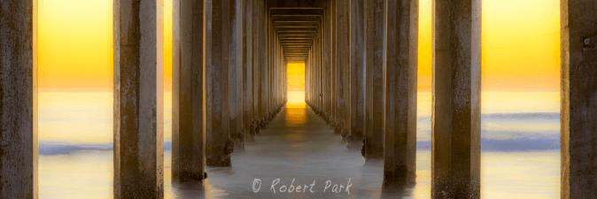 robert-park-heavens-gate