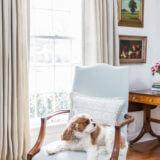 Elizabeth Sweet Interiors